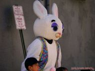 The Great Red Bank Egg Hunt 2018 6 of 33