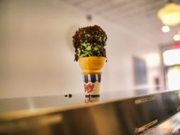 Tspoon Red Bank National Ice Cream Cone Day 32 of 41