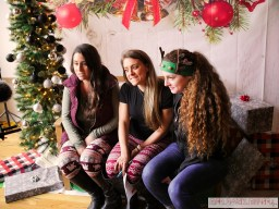 Home Free Animal Rescue with Santa Paws at Bradley Brew Project 49 of 53