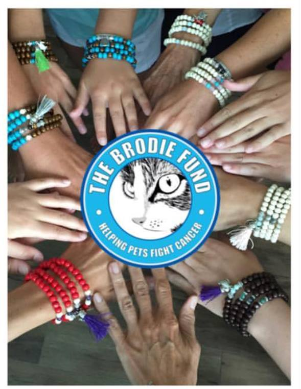Malas on a Mission to benefit The Brodie Fund