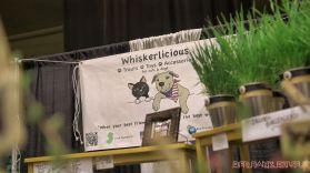 Catsbury Park Cat Convention 2019 118 of 183