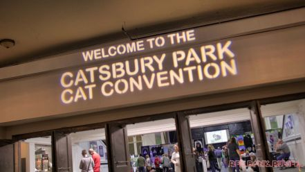 Catsbury Park Cat Convention 2019 178 of 183