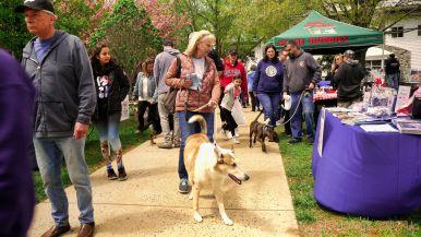 Monmouth County SPCA dog walk & pet fair 2019 5 of 95