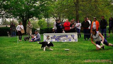 Monmouth County SPCA dog walk & pet fair 2019 55 of 95