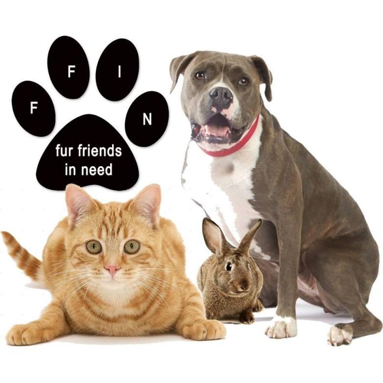 Fur Friends In Need Logo