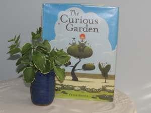 curiousgarden