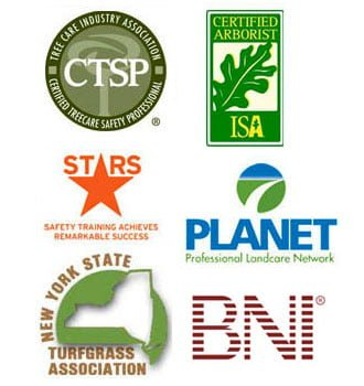 logos-affiliate-memberships