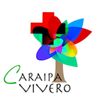 Caraipa Vivero