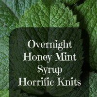 Overnight Honey Mint Syrup