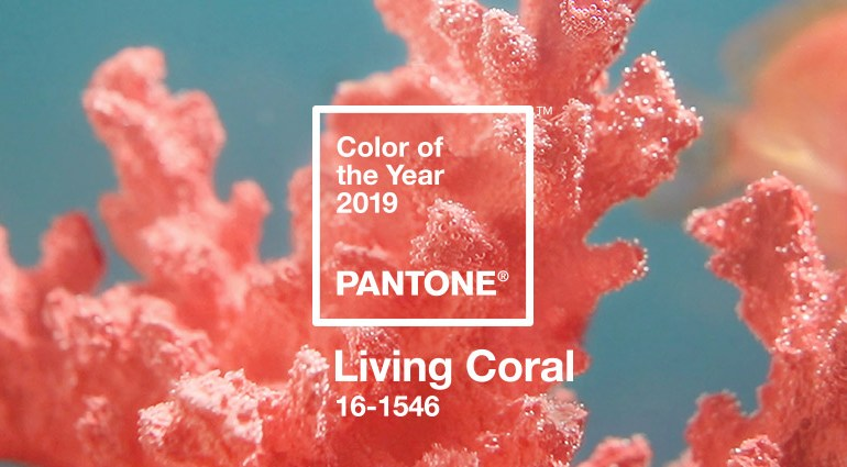 Living Coral – цвет 2019 года по версии Pantone