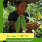 IIED report on Tenure in REDD: Theory 1, Reality 7