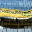 Greenpeace banner drop, Ministry of Forestry, Jakarta. PHOTO: Antara