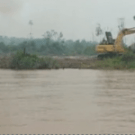 Stop the Indonesia-Australia REDD+ project: Indigenous Peoples' opposition to the Kalimantan Forests and Climate Partnership