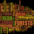 REDD in the news: 26 March - 1 April 2012
