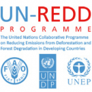 Voting open for UN-REDD civil society observer
