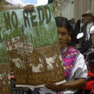 Protests in Chiapas against REDD