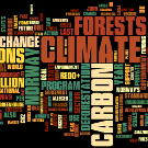 REDD-Monitor's round-up of the week's news on forests, climate change, and REDD.