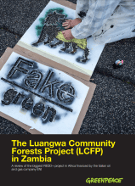 Luangwa Community Forests Project