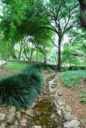 Another pathway in the Japanese Garden