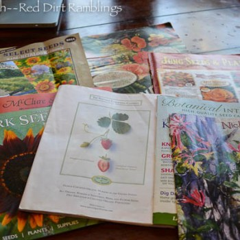 Seed catalogs 2014