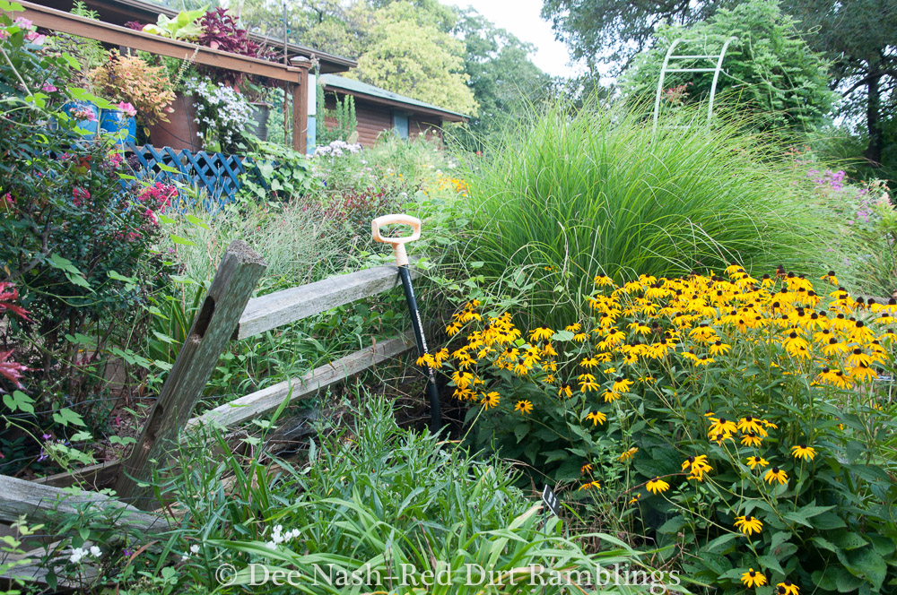The garden is chaos in summer. I need help.