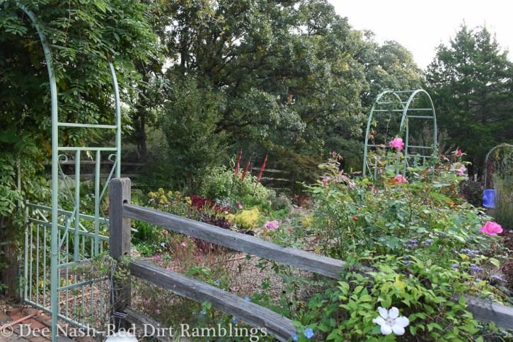 The back garden beckons.