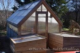 The greenhouse and cold frames on a cool morning. Notice the condensation on the windows. Everything is nice and warm.