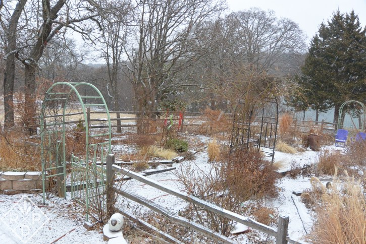 Back garden in winter shows the layout. Dee Nash