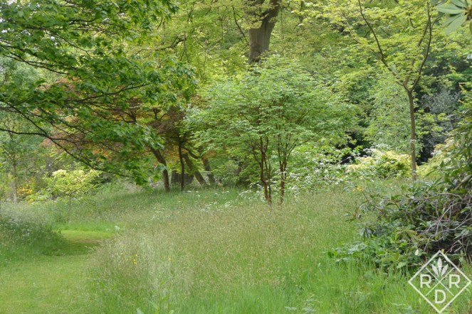 A meadow at Hever Castle.