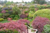 Beautiful gardens at Hever Castle.