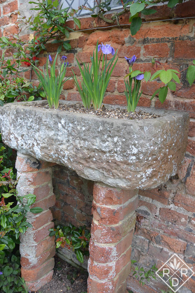 A vignette in an old concrete planter. There were two of these along this wall.