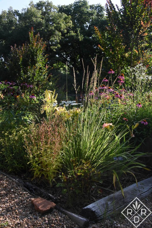 Back garden bed with daylilies, ornamental grasses, native plants and crapemyrtles.