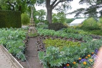 Formal gardens at Wisley Gardens.