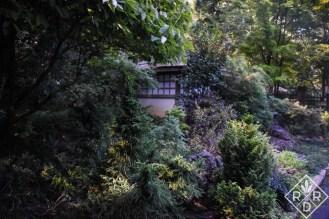 Tiny teahouse in the Dooley garden.