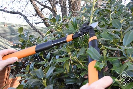 """Fiskars garden tool giveaway. Fiskars PowerGear2™ Lopper (18"""") Dee Nash"""