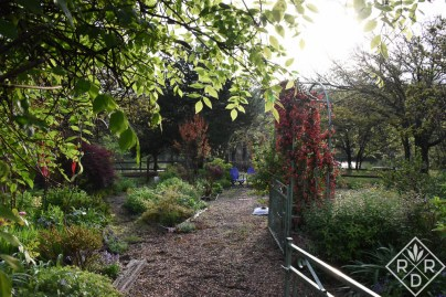 Come with me through my back garden gate.