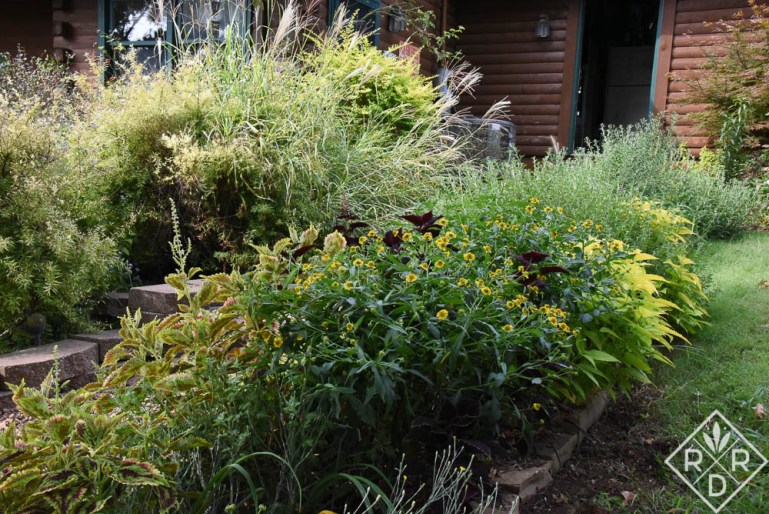 One of my favorite spots in the garden right now is this border next to the garage and sidewalk.