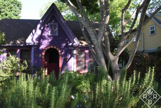 Lucinda Hutson' purple casita has rosemary hedges out front. I wonder if they are the type of rosemary that blooms blue? Or, are do they bloom white?