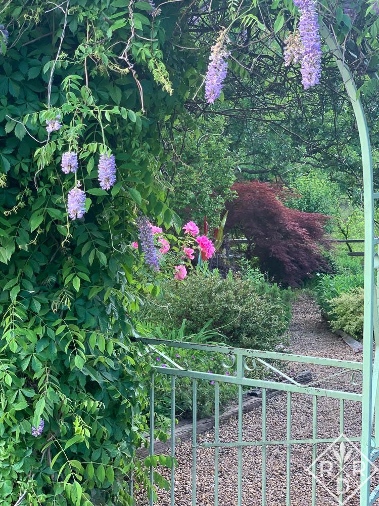 Green arbor in Dee Nash's Little Cedar Garden