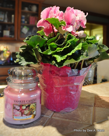 Valentine's Day cyclamen with a Fresh Cut Roses scented candle