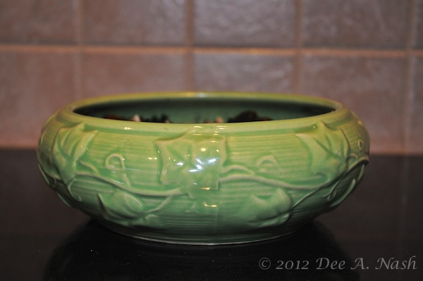 I'm trying to force tommies in this vintage, green forcing bowl from Shawnee pottery.