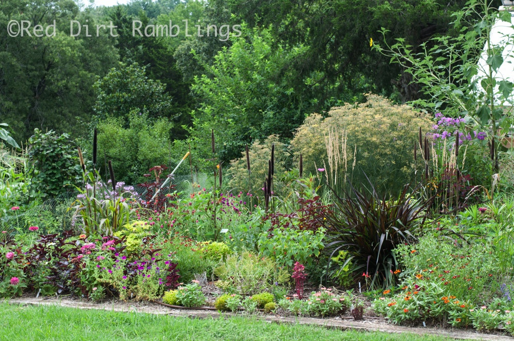 This flowerbed is one I experiment with each year. In 2013, I used a lot of the seeds I'd started indoors in this bed.