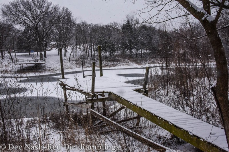 Our dock and our neighbor's on the frozen pond. The ongoing drought has lowered our pond so much that our docks are high and dry.  Snow Play Red Dirt Ramblings Dee Nash
