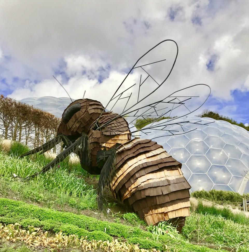 Bee Sculpture, Eden Project