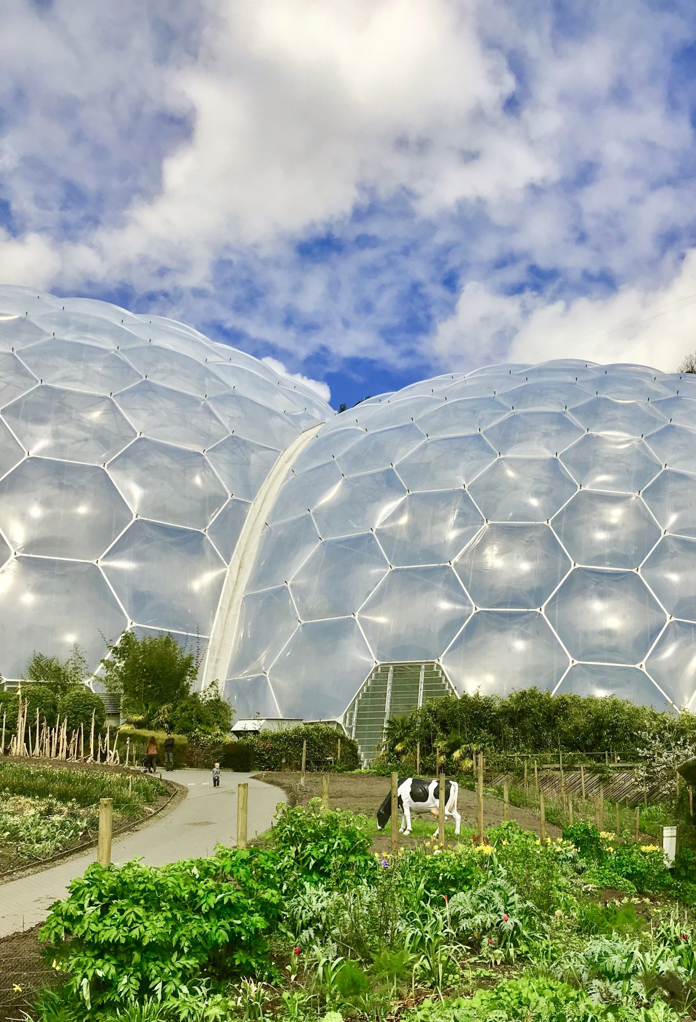 Biome Eden Project