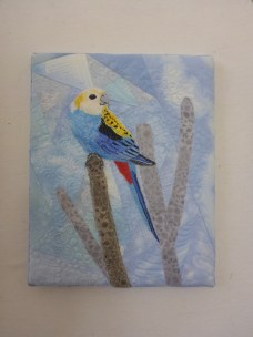 Pale headed Rosella by Sue