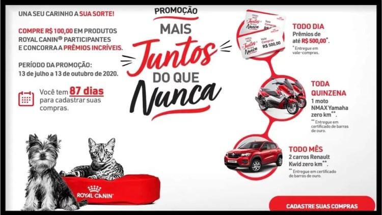 Promoção Royal Canin 2020 Mais juntos do que nunca