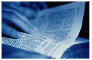 Bible translation Genesis 6