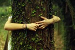 Can Christians be Tree Huggers?