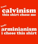 Do you want a blog series on Calvinism?